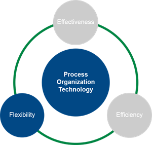 Chart_ProcessOrganization_Flexibility